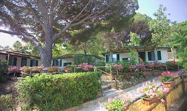 Camping Acquaviva Village | Portoferraio
